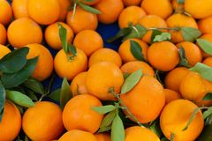 Nieuwe oogst van zoete rijpe sinaasappelenvruchten op markt stock foto