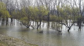 Nieuwe rivier naast oude rivier Royalty-vrije Stock Foto's