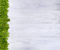 Nieuwe sparrentakken op witte houten raad voor het vakantieoverzees Royalty-vrije Stock Fotografie