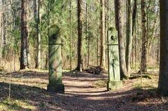Nieuwe Sylvia Gate in het Pavlovsk park Royalty-vrije Stock Foto