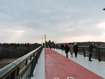 Nieuwe voetgangersbrug, Litouwen Royalty-vrije Stock Fotografie