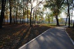 Nieuwe wegtrog het park stock foto