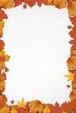 Nieuwe zoete de herfstachtergrond royalty-vrije stock foto