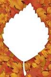 Nieuwe zoete de herfstachtergrond stock afbeelding