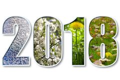 2018 nieuwjaar stock illustratie