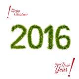 Nieuwjaar 2016 geïsoleerde takken van de Kerstmisboom Stock Fotografie
