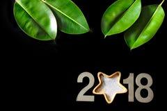 Nieuwjaar 2018, groene bladeren van de ficus op een zwarte achtergrond Royalty-vrije Stock Foto