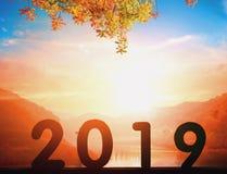 2019 Nieuwjaarconcept: 2019 bij zonsondergangachtergrond stock foto's