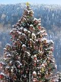 Nieuwjaarkerstboom in Yaremche in Carpathians_2 Royalty-vrije Stock Foto