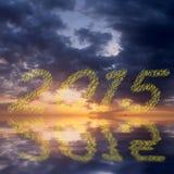 2015 nieuwjaarvuurwerk Stock Afbeelding