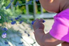 Nieuwsgierige baby Royalty-vrije Stock Fotografie