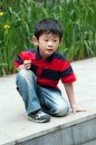 Nieuwsgierige jongen Royalty-vrije Stock Fotografie