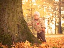 Nieuwsgierige jongen in de herfstpark Stock Fotografie