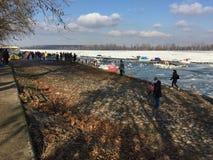 Nieuwsgierige menigte die de ijsbergen bekijken die op de Donau drijven riv Stock Foto