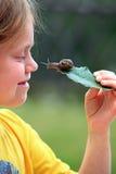 Nieuwsgierige slak Stock Foto
