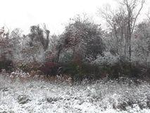 Nieva en galveston Foto de archivo