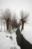 Nieve Imágenes de archivo libres de regalías