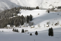 Nieve 4 Fotografía de archivo libre de regalías