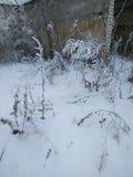 nieve Fotografía de archivo