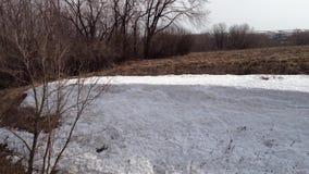 Nieve acumulada por la ventisca de la nieve en el bosque del invierno metrajes