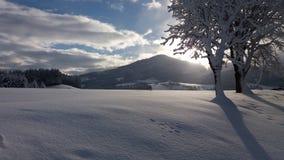 Nieve Austria Foto de archivo libre de regalías