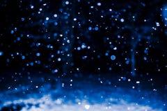 Nieve borrosa del invierno en bosque imagen de archivo libre de regalías