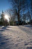 Nieve brillante debajo del cielo azul Fotografía de archivo