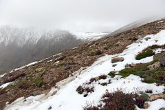 Nieve caida fresca en Rocky Mountains Imagen de archivo libre de regalías