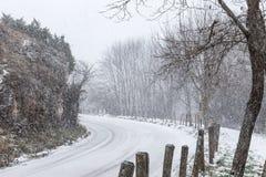 Nieve, camino y árbol Fotos de archivo libres de regalías