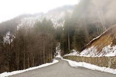 Nieve, camino y bosque Foto de archivo