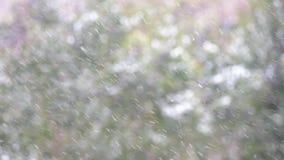 Nieve con efecto a cámara lenta metrajes