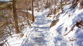 Nieve de Huangshan del soporte en invierno fotos de archivo libres de regalías