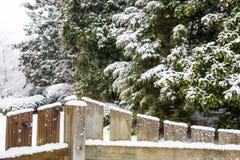 Nieve de la cerca de madera con los árboles de hoja perenne en fondo Fotografía de archivo libre de regalías