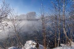 Nieve de la escarcha de los árboles de la niebla del lago Foto de archivo