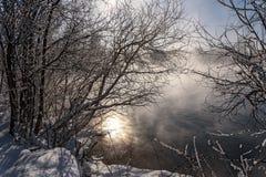 Nieve de la escarcha de los árboles de la niebla del lago Fotografía de archivo libre de regalías