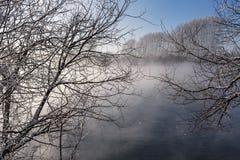 Nieve de la escarcha de los árboles de la niebla del lago Fotos de archivo