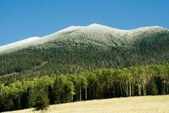 Nieve de la montaña Imagenes de archivo