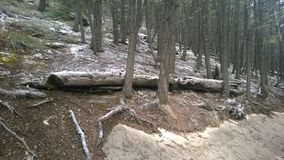 Nieve de la montaña del túnel Fotografía de archivo libre de regalías