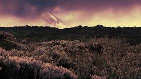 Nieve de la opinión superior de Kilimanjaro foto de archivo