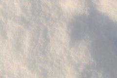 Nieve de la tarde Fotos de archivo libres de regalías