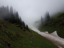 Nieve de las avalanchas en la garganta imágenes de archivo libres de regalías