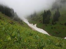 Nieve de las avalanchas en la garganta imagen de archivo
