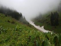 Nieve de las avalanchas en la garganta fotos de archivo libres de regalías
