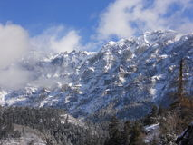 Nieve de las montañas de Colorado primera Imagenes de archivo