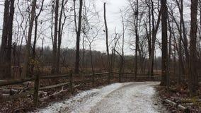 Nieve de los parques que camina árboles de los caminos de tierra Imagenes de archivo