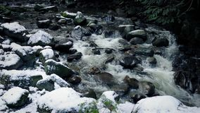 Nieve de Rocky Mountain River In The almacen de video