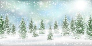 Nieve del árbol de pino del landscspe del invierno de la Navidad foto de archivo libre de regalías