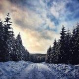 nieve del camino del invierno foto de archivo