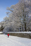Nieve del invierno en Inglaterra norteña Fotografía de archivo libre de regalías