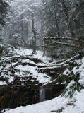 Nieve del invierno en las montañas Imagen de archivo libre de regalías